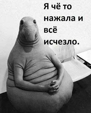 """Ждун - мем """"нажал и все исчезло"""""""